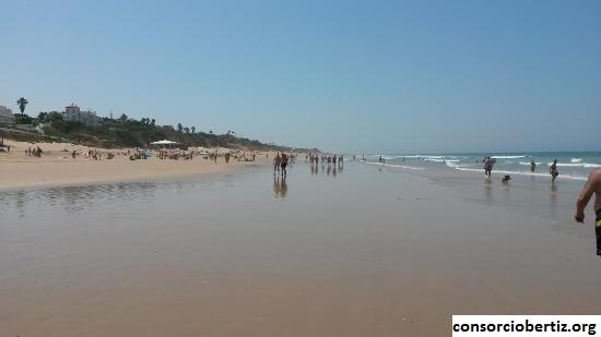 Beberapa Hal Menyenangkan Yang Bisa Dilakukan di  Pantai La Barrosa, Spanyol